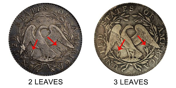 1795 2 Leaves vs 3 Leaves Flowing Hair Half Dollar - Difference and Comparison