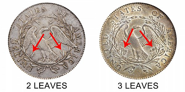 1795 Flowing Hair Silver Dollar Varieties - Difference and Comparison