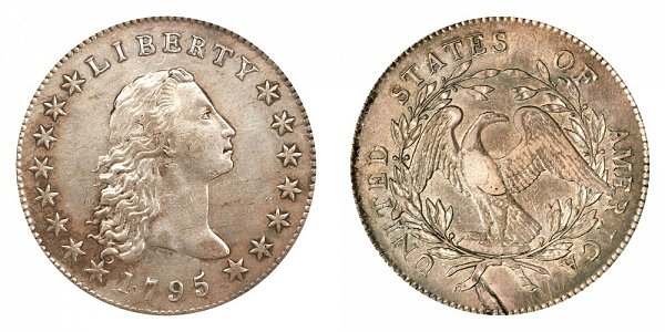 1795 Flowing Hair Silver Dollar - Silver Plug