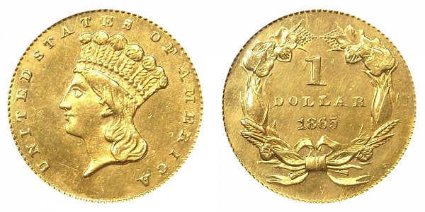 1865 Large Indian Princess Head Gold Dollar G$1