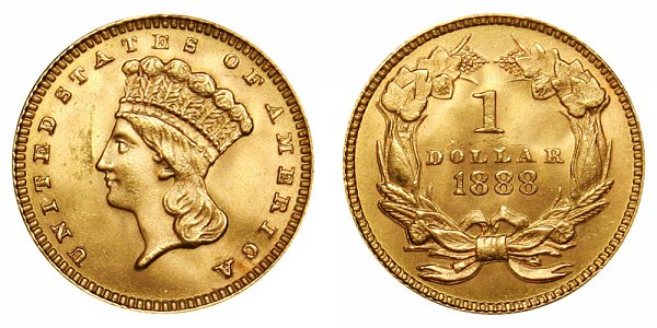 1888 Large Indian Princess Head Gold Dollar G$1