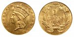 Large Indian Head Gold Dollars