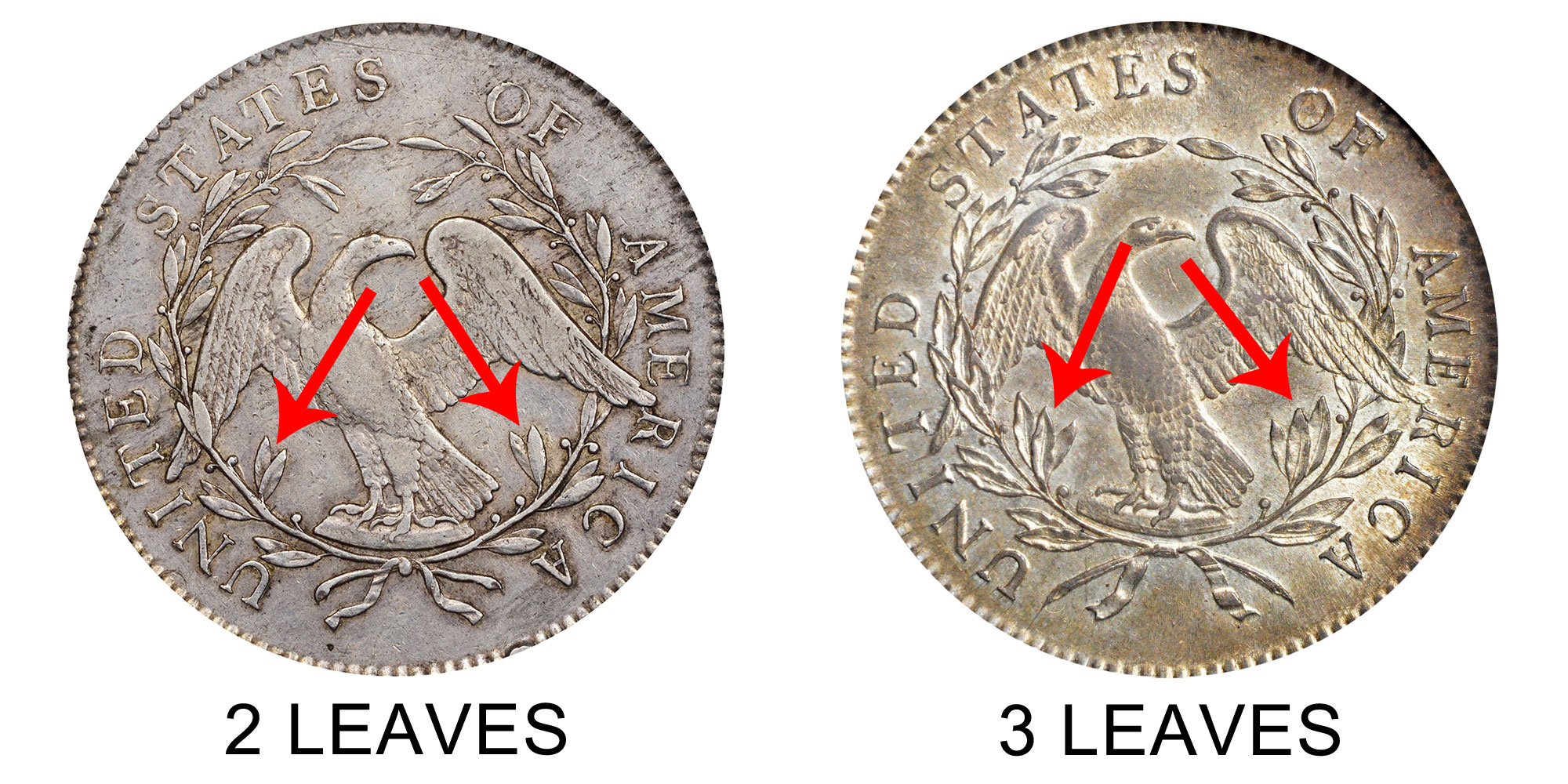 1 Pound Silver Coin Price