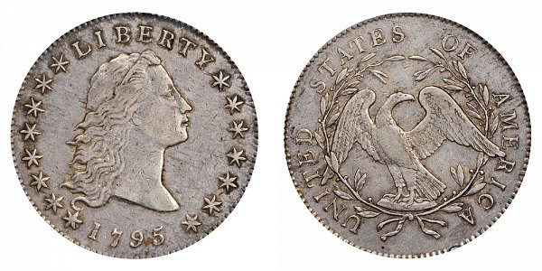 1795 Flowing Hair Silver Dollar - 2 Leaves