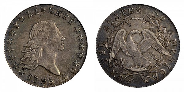 1795 Flowing Hair Half Dollar Varieties - Difference and Comparison