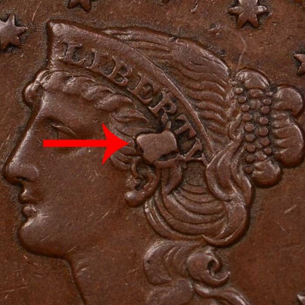 1855 Knob On Ear Braided Hair Large Cent - Difference and Comparison