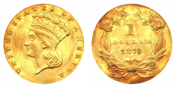 1873 Large Indian Princess Head Gold Dollar G$1 - Open 3