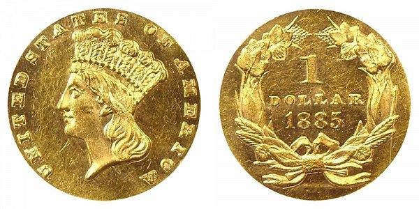 1885 Large Indian Princess Head Gold Dollar G$1