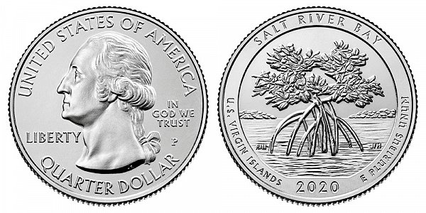 2020 P Salt River Bay Quarter - US Virgin Islands